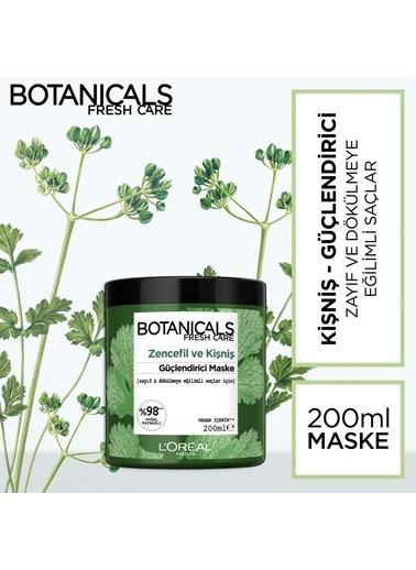 L'Oréal Paris Botanicals Fresh Care Kişniş Güç Kaynağı Maske 200 Ml Renksiz